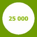 25 000 свай погружено